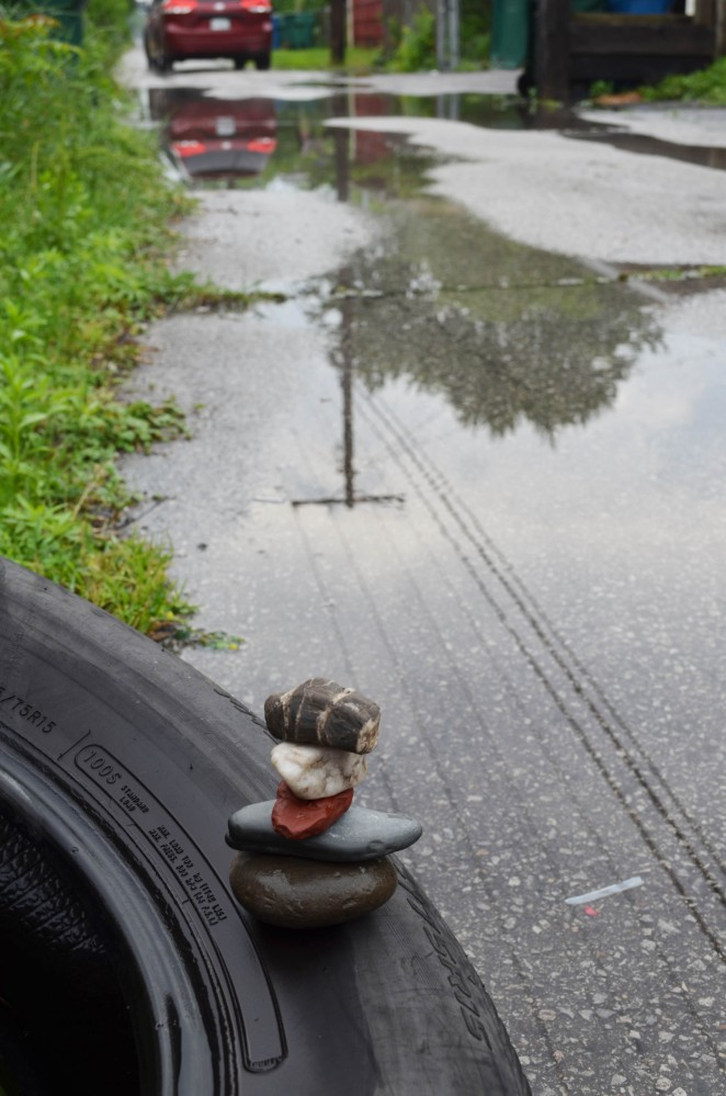 WMC Discarded Tire After the Rain 2015.6.12_5521