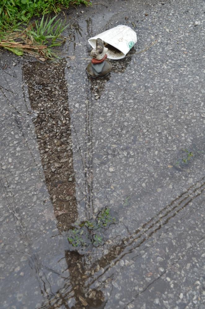 WMC-StrbkCp-puddle-pole refl2015.6.12_5525